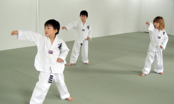 an introduction to the art of tae kwon do T ae kwon doa brief introduction the new name of tae kwon do was chosen to reflect this art of self defence in 1955 to better reflect the tae won do's.